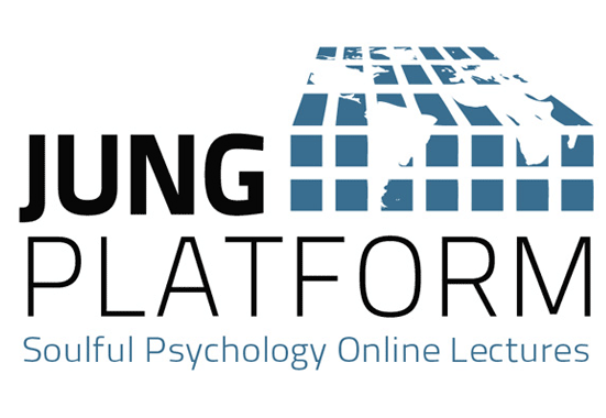 Jung Platform Case Study